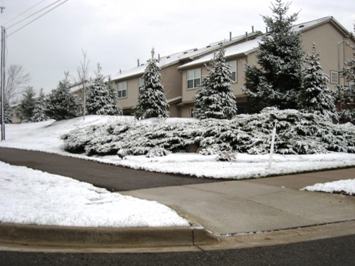07 Snowfall.JPG