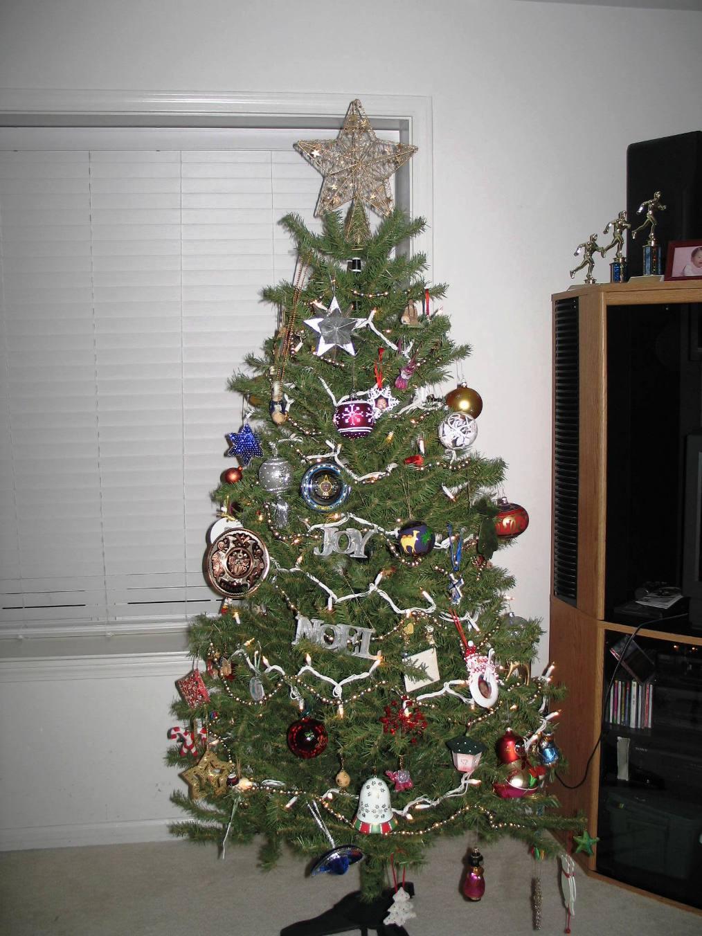 Final Tree2.JPG