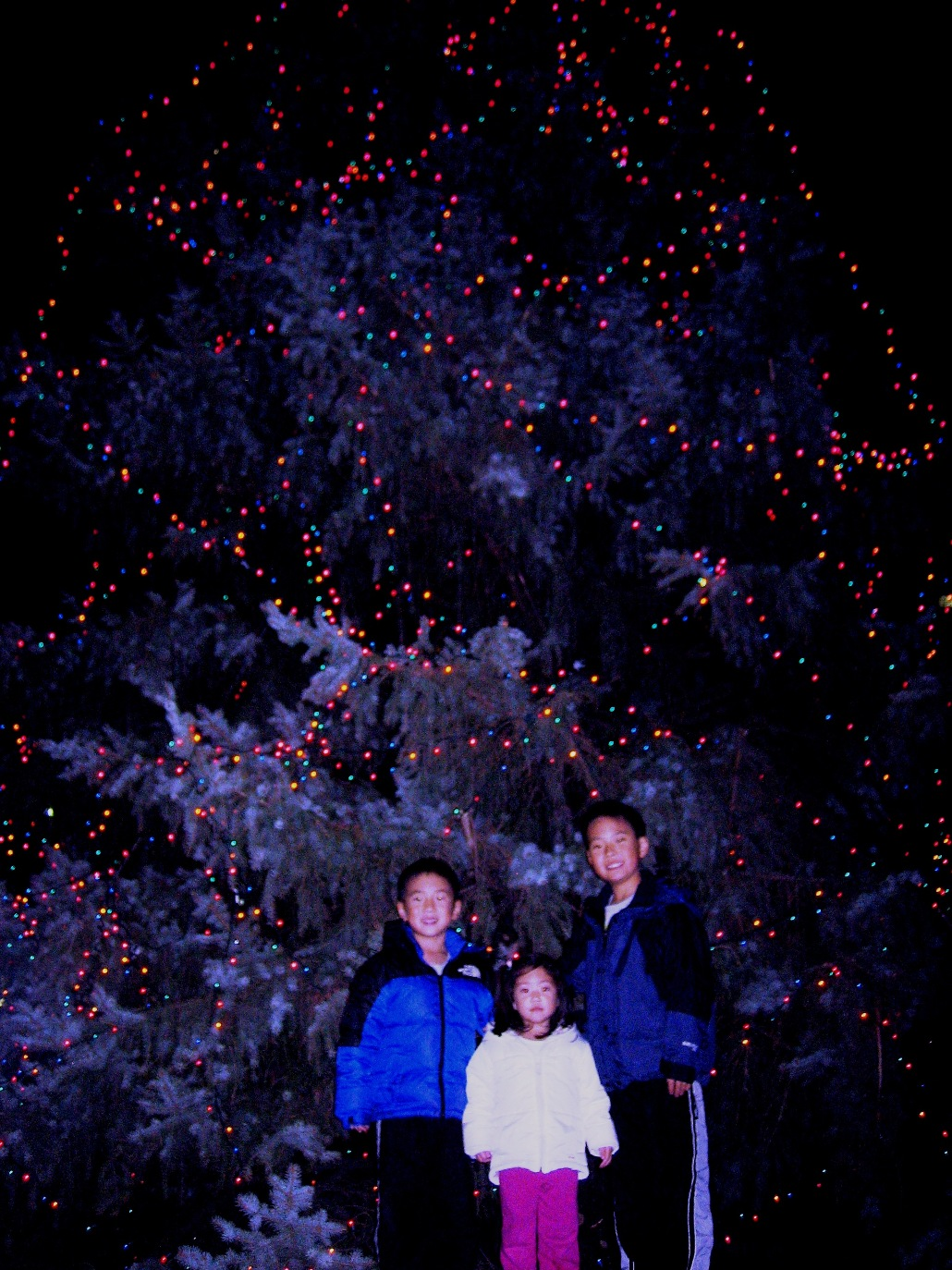 Kids in Front of Tree1.JPG