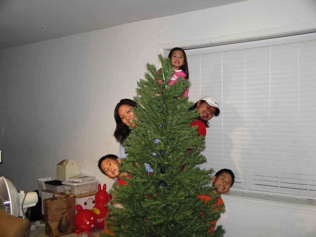 Putting up the tree2.JPG