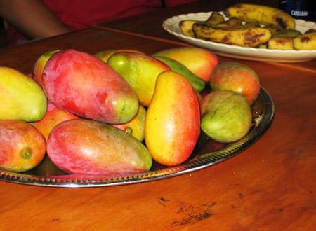 kenya_fruit_valley.jpg